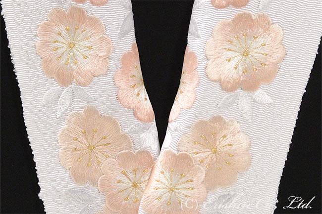 半衿 半襟 牡丹桜